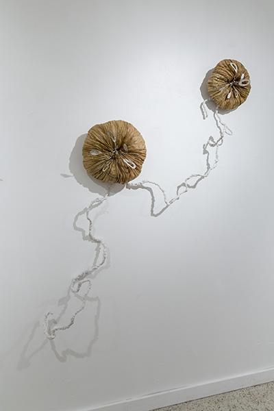 3 hydro-medusa