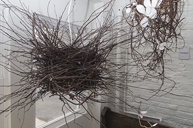 Sculptural Installations with Natural Materials