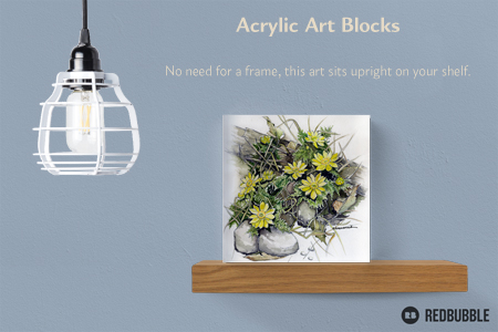 "Watercolor ""Adonis"" mounted on Acrylic Block"